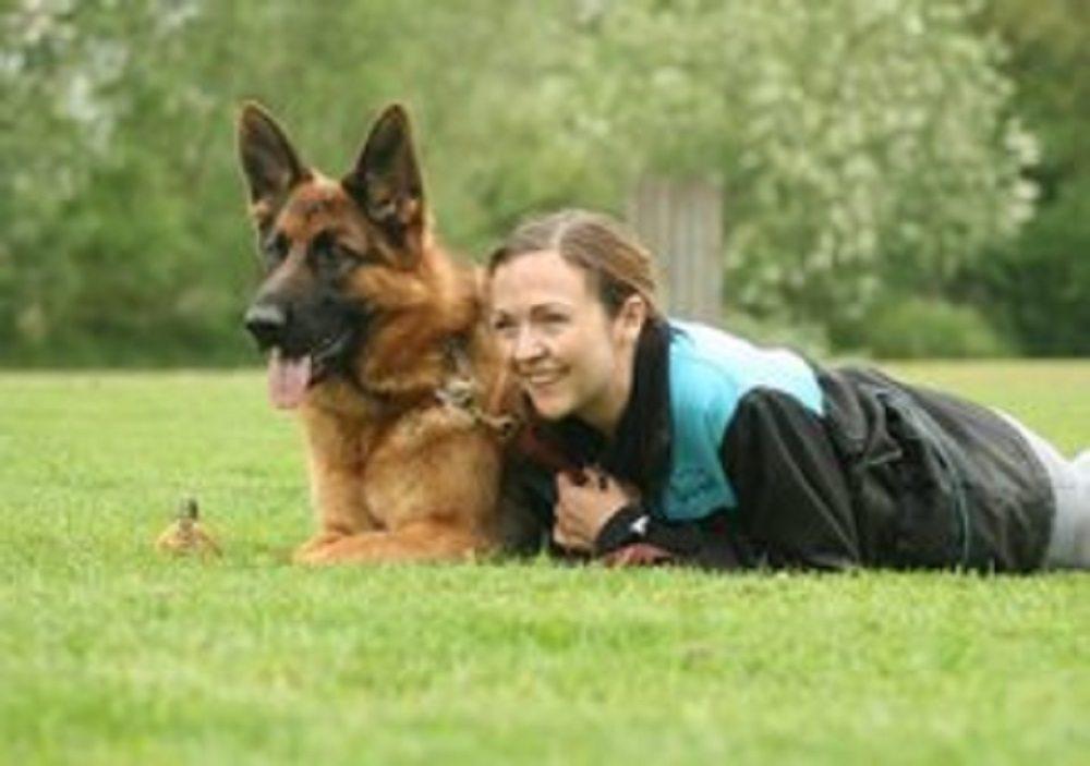 Chavi hondenverkiezing