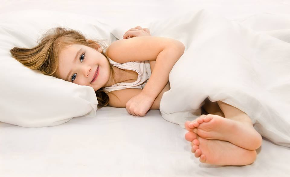 dutch dream aanbieding
