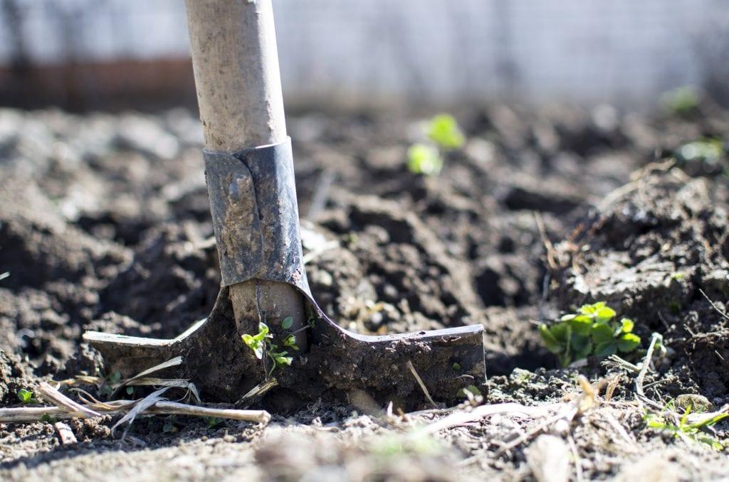 Huisdier tuin schep grond
