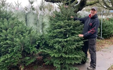 Gerrits Kerstbomenland