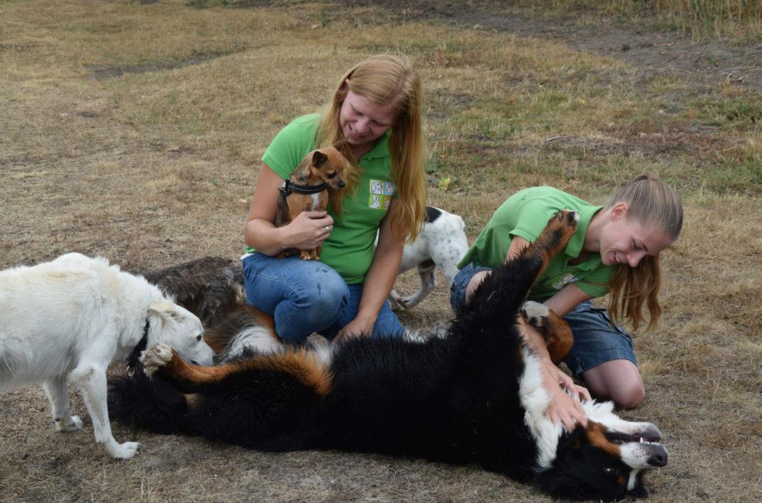 huisdierservice den bosch bosschenaren bijzonder beroep