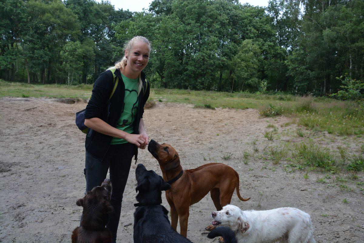 Edi met honden
