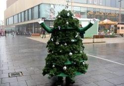 Kerstboom inleveren Deventer
