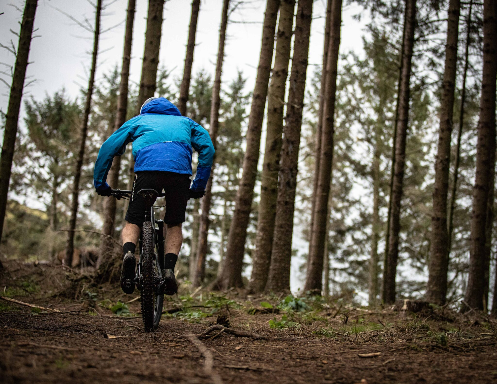 mountainbike-bos-deventer