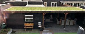 Groen dak Apeldoorn