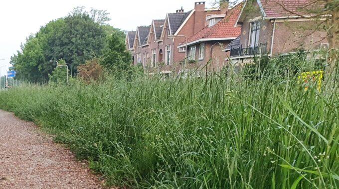 Gras gemeente maaien