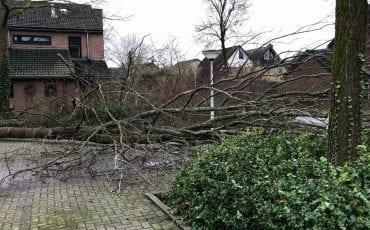 storm-stormschade-doetinchem