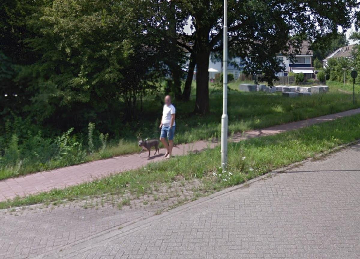 doetinchem-honden-en-baasje-google-streetview
