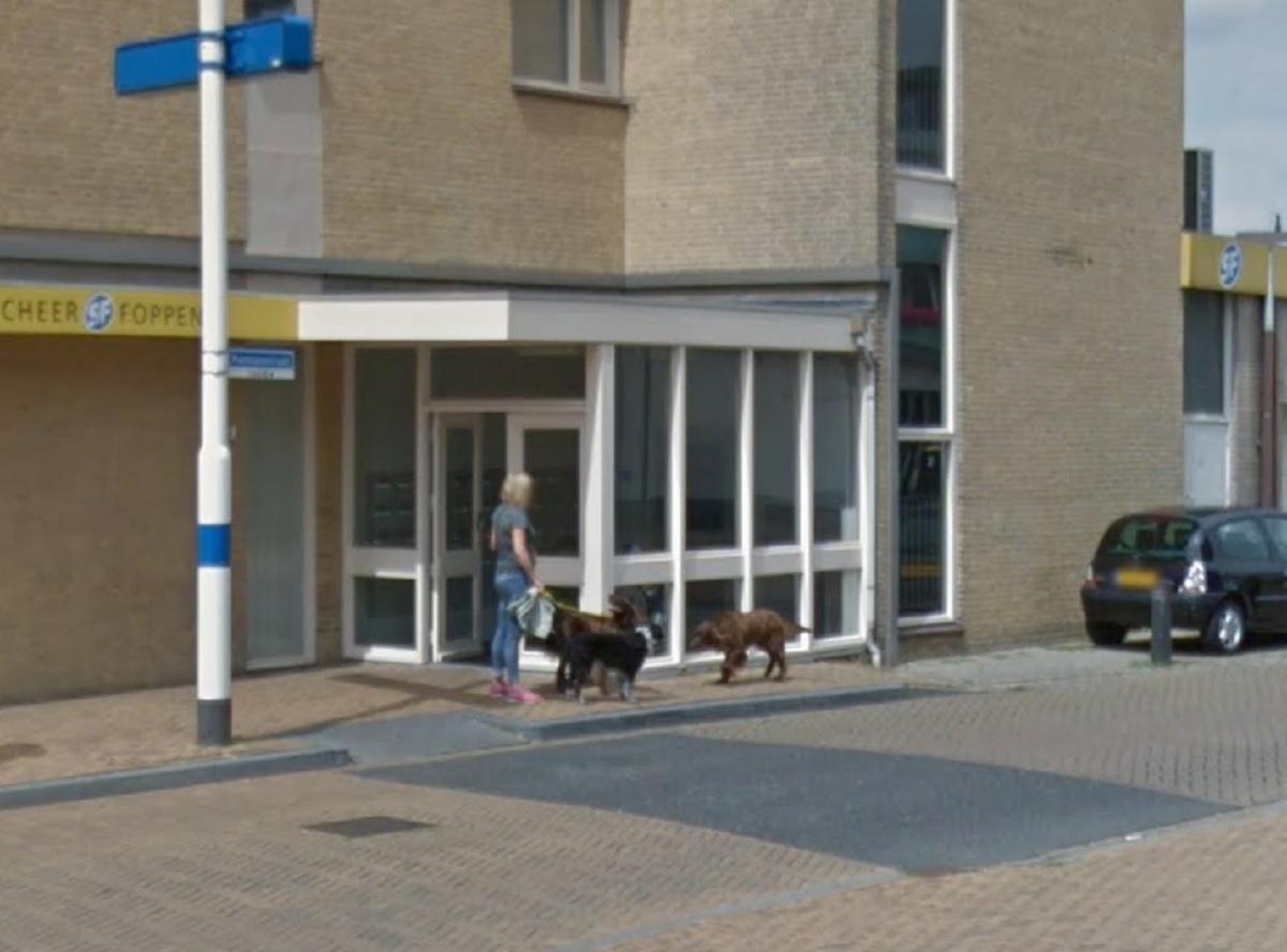doetinchem-honden-en-baasje-google-streetview-78