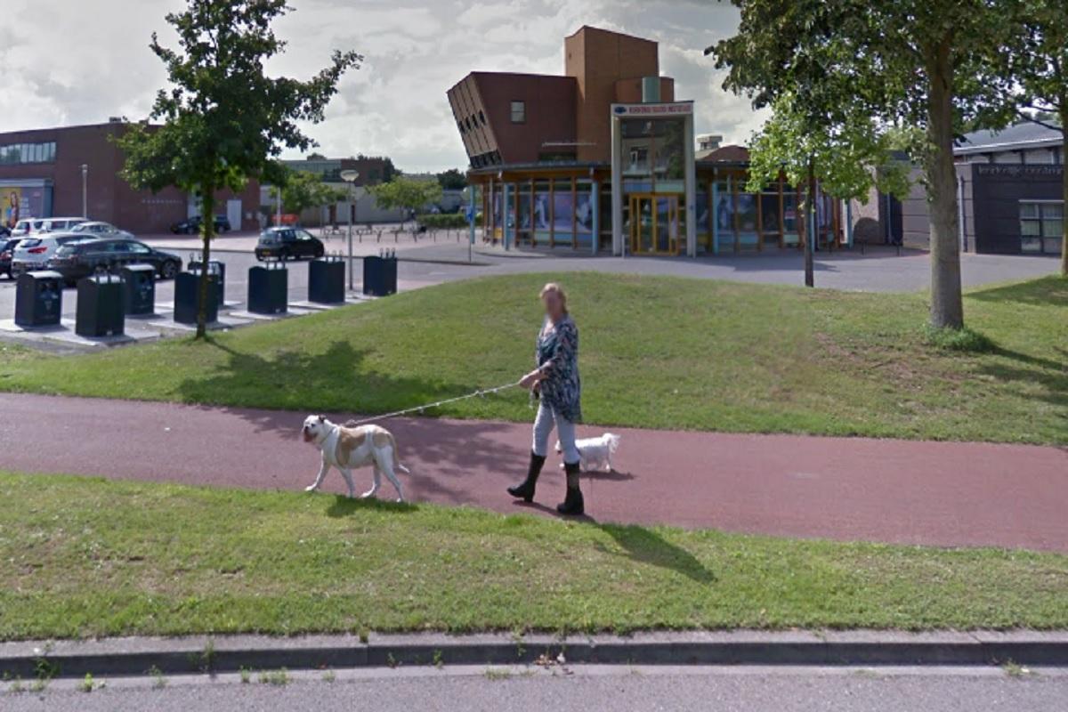 doetinchem-honden-en-baasje-google-streetview-3