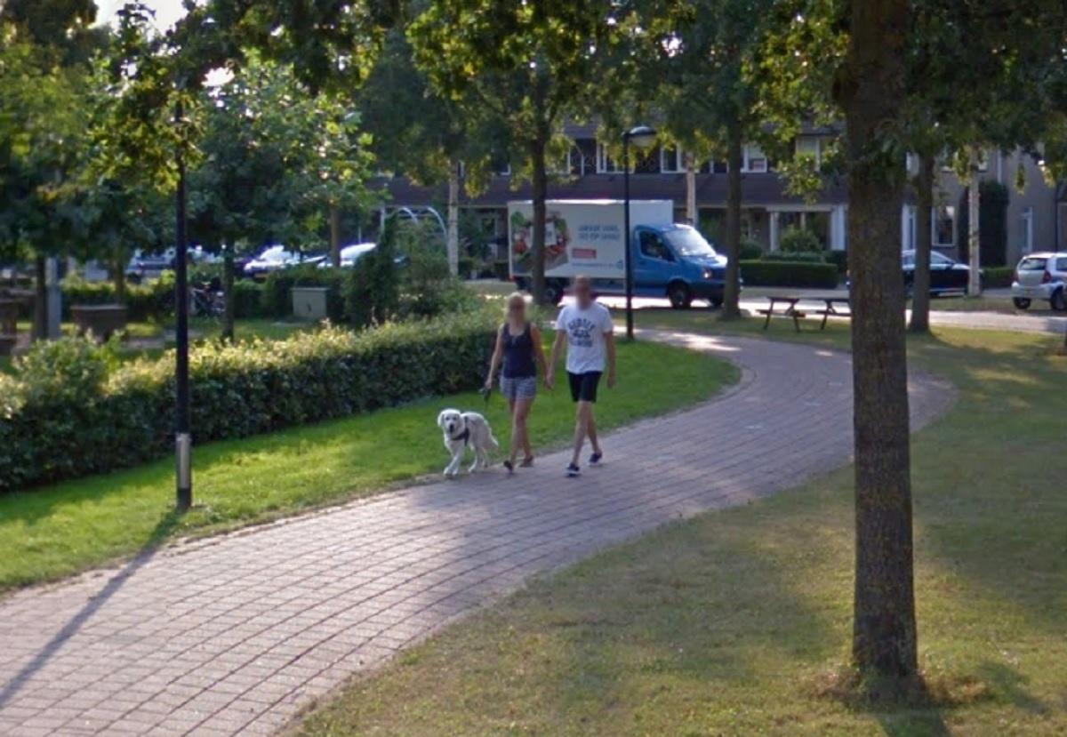 doetinchem-honden-en-baasje-google-streetview-2