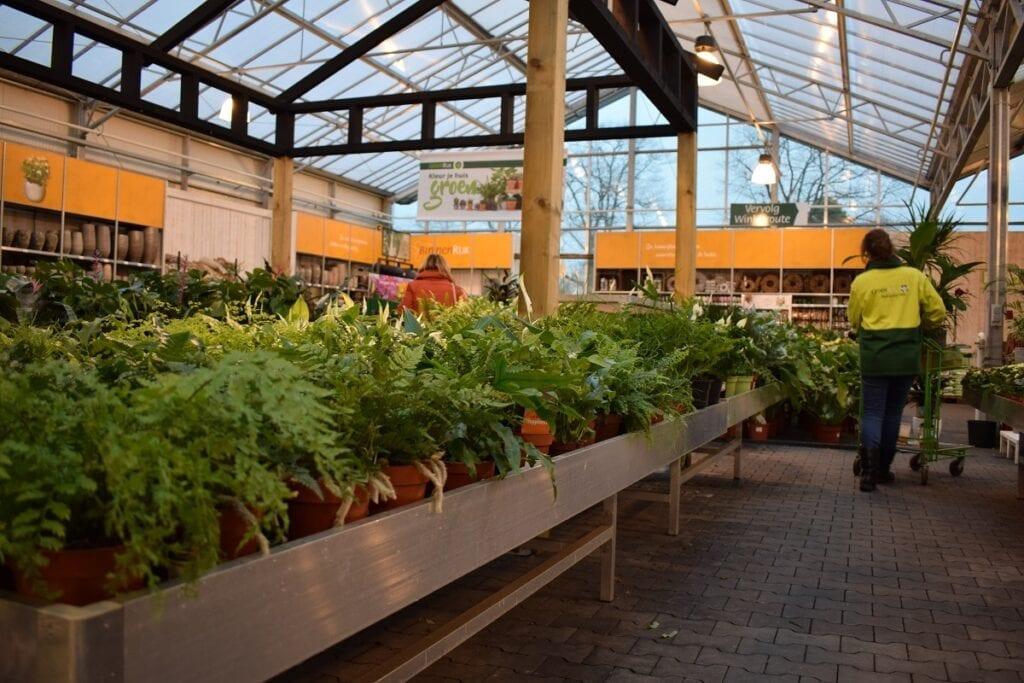 Groenrijk Steentjes-tuincentrum-doetinchem (6)