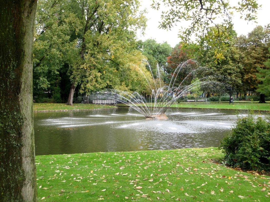 parken in Dordrecht weizigtpark