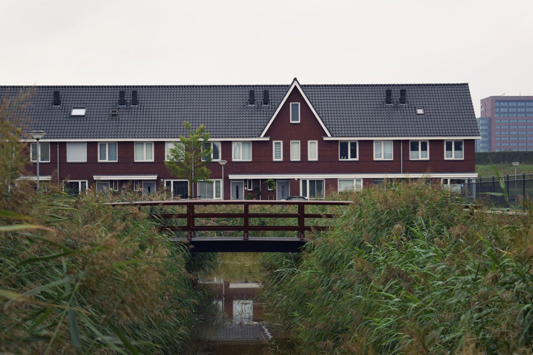 Wilgenwende groen natuur park Dordrecht genieten van