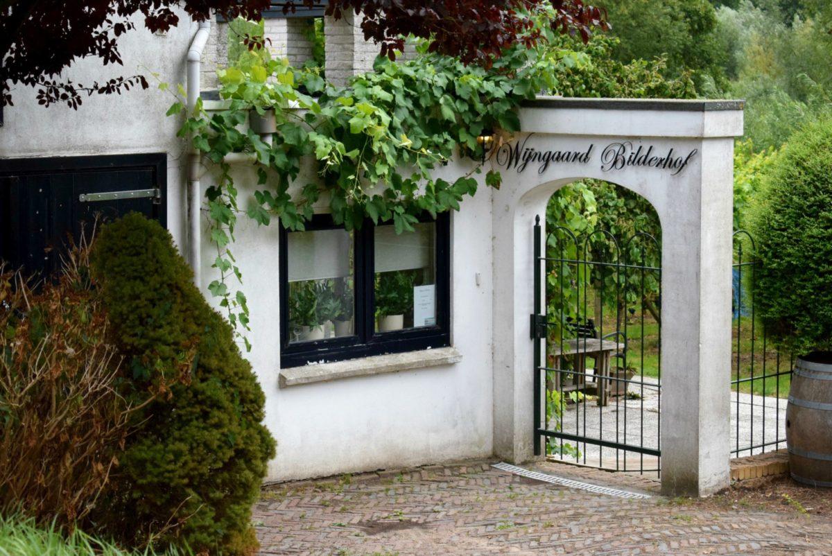 Wijngaard Bilderhof - indebuurt Dordrecht.jpg