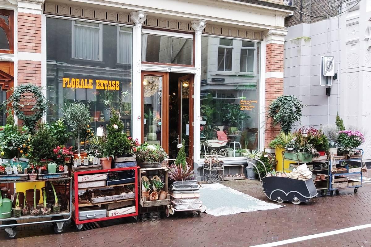 Florale Extase Voorstraat Dordrecht plantenwinkel