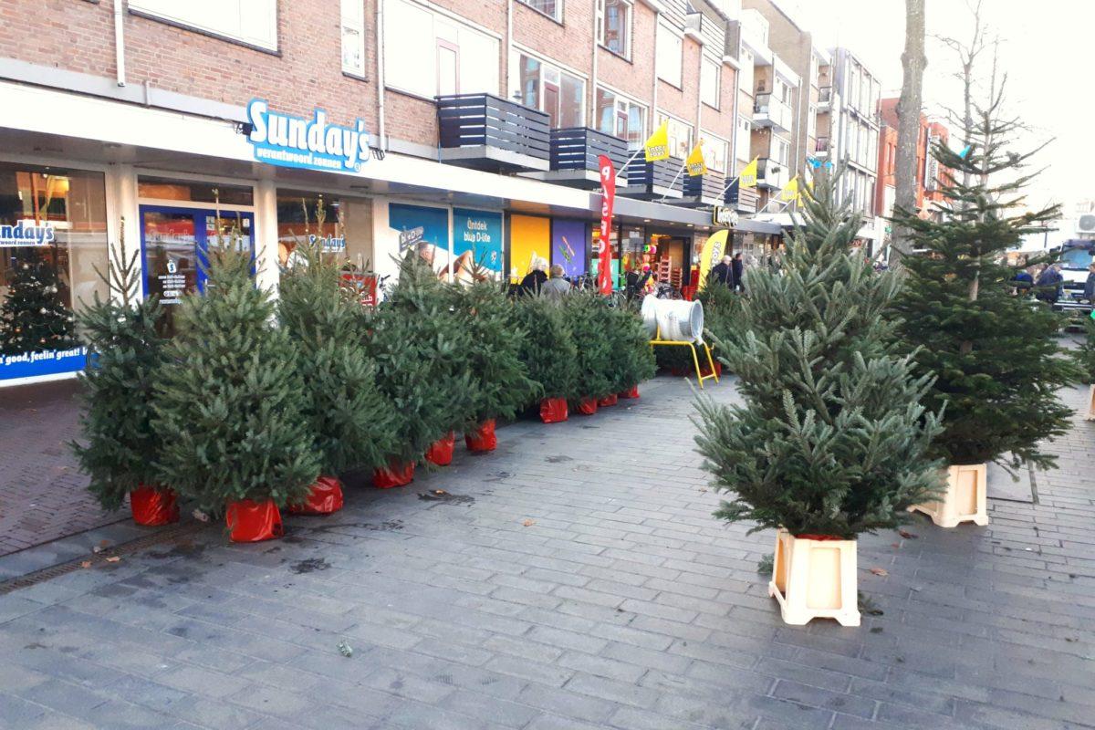 Kerstbomenverkoop markt Dordrecht Statenplein - indebuurt Dordrecht