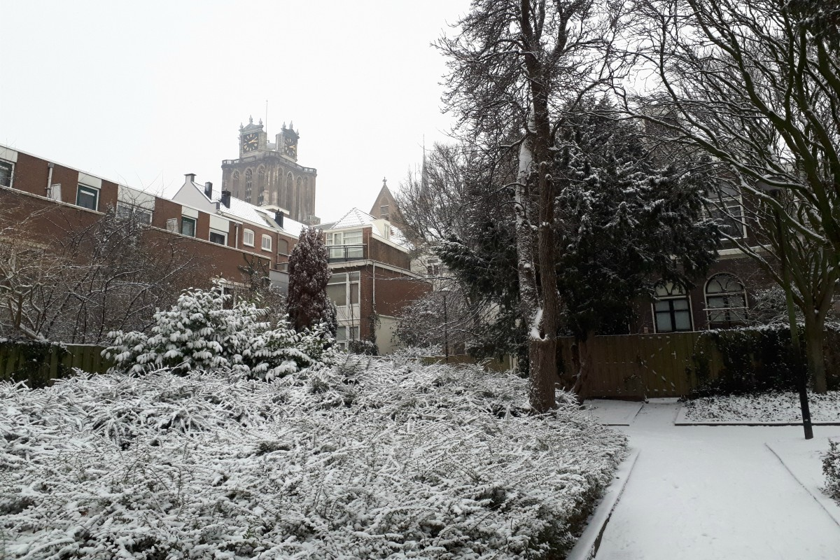 Sneeuw in Dordrecht Grote Kerk - indebuurt Dordrecht
