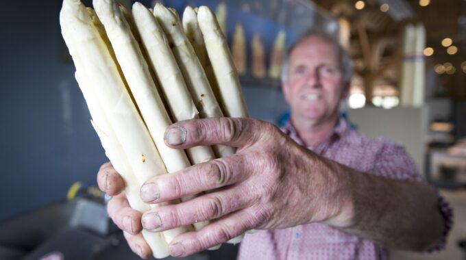 Asperges kopen Dordrecht groene witte groenteboer groentespeciaalzaak