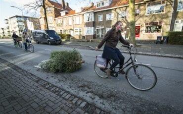 Kerstboom inleveren Dordrecht ANP Valerie Kuypers