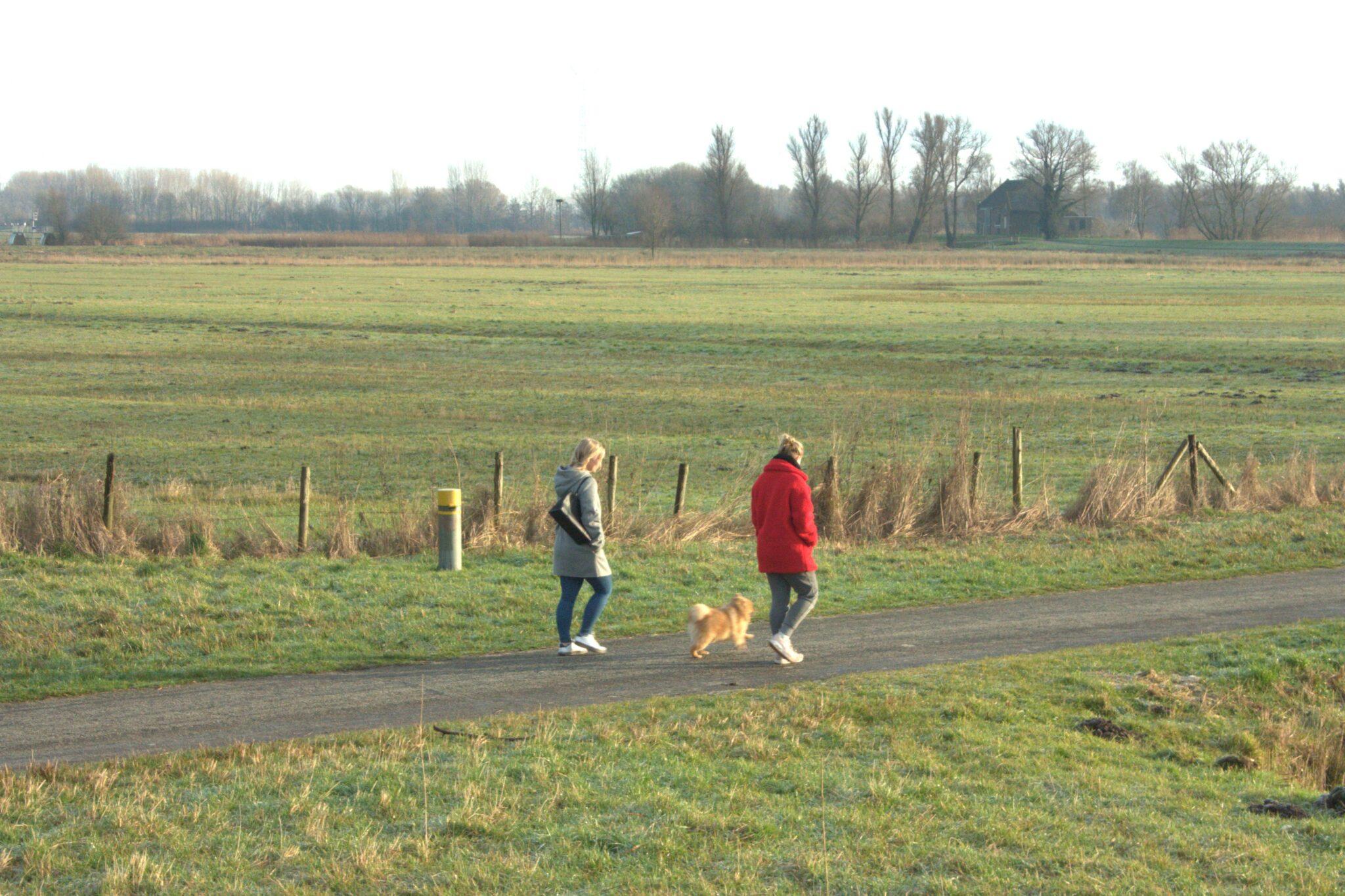 De Biesbosch - wandelen hapje eten drinken - indebuurt Dordrecht
