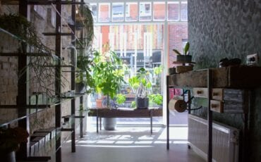 Pim Menco browbar wenkbrauwensalon - Dordrecht Voorstraat.jpg