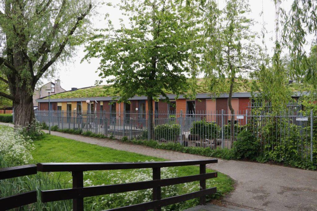 Groen dak Dordrecht Interpolis sedumdak aanleggen subsidie basisschool