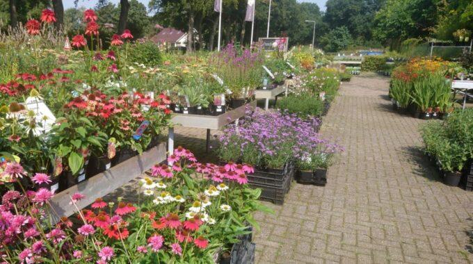 Tuincentrum De Driesprong