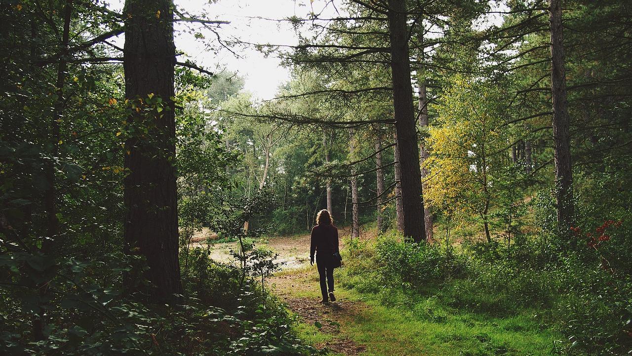 wandelen wandelroutes