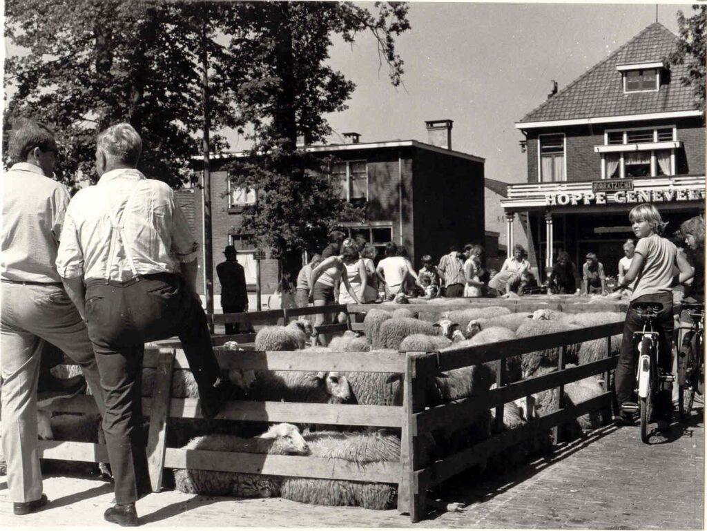 Schapenmarkt