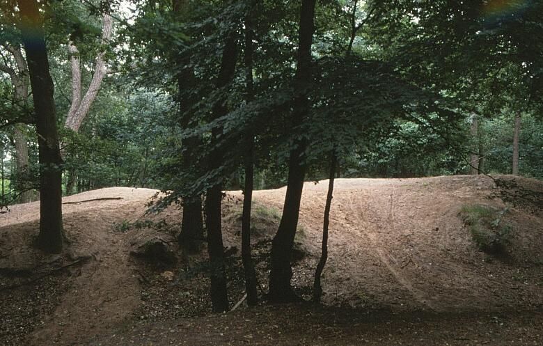 Het Doolhof in het Edese Bos
