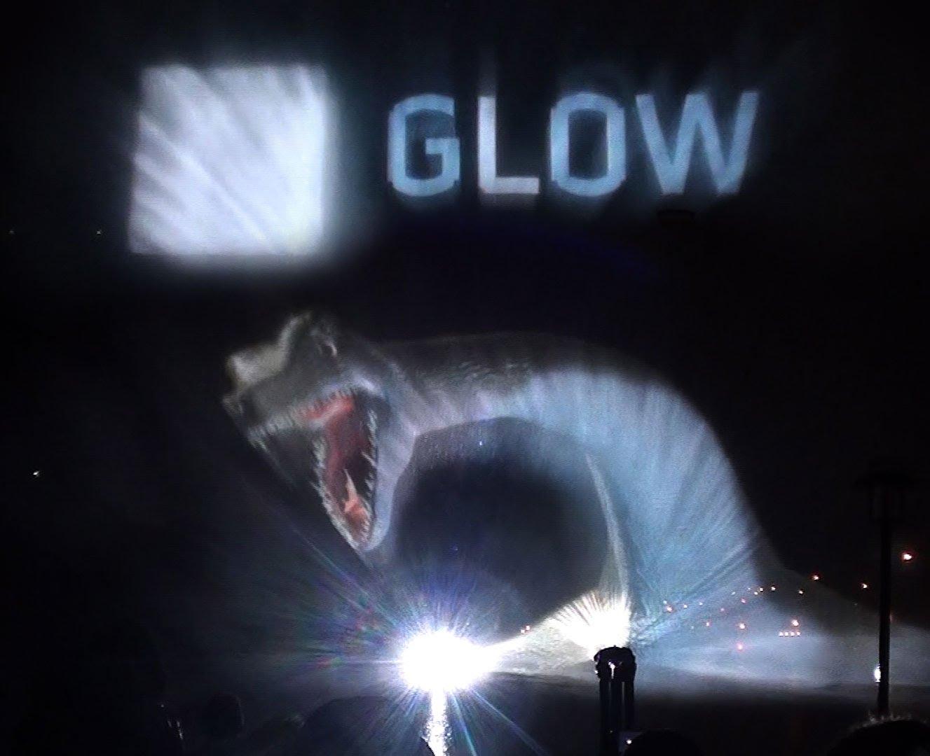 Glow 2013