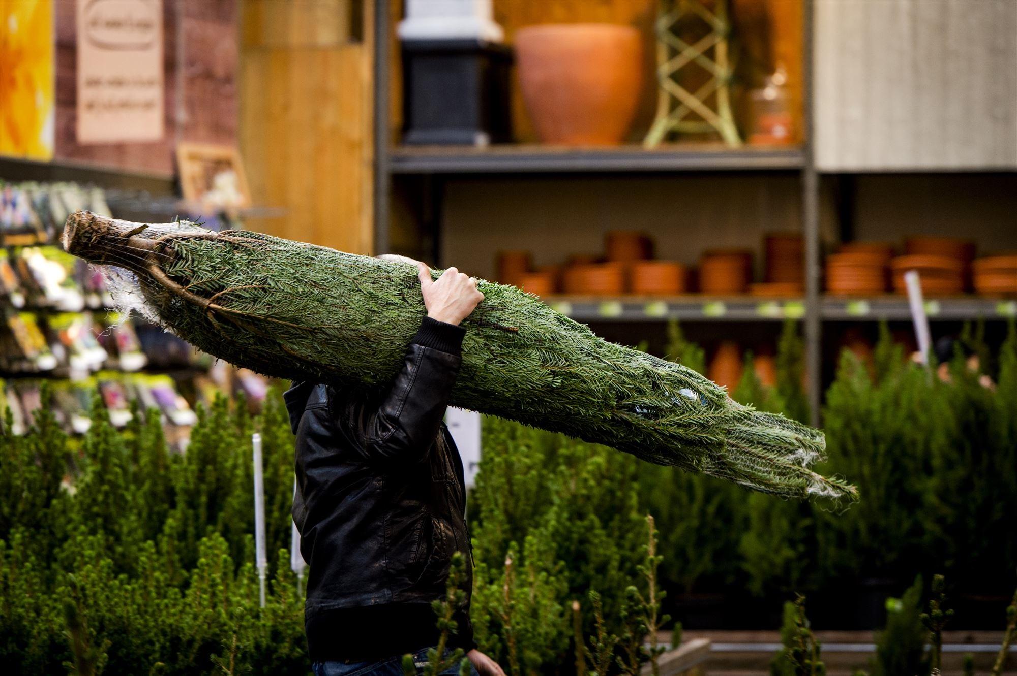 Kerstboom kopen in Eindhoven