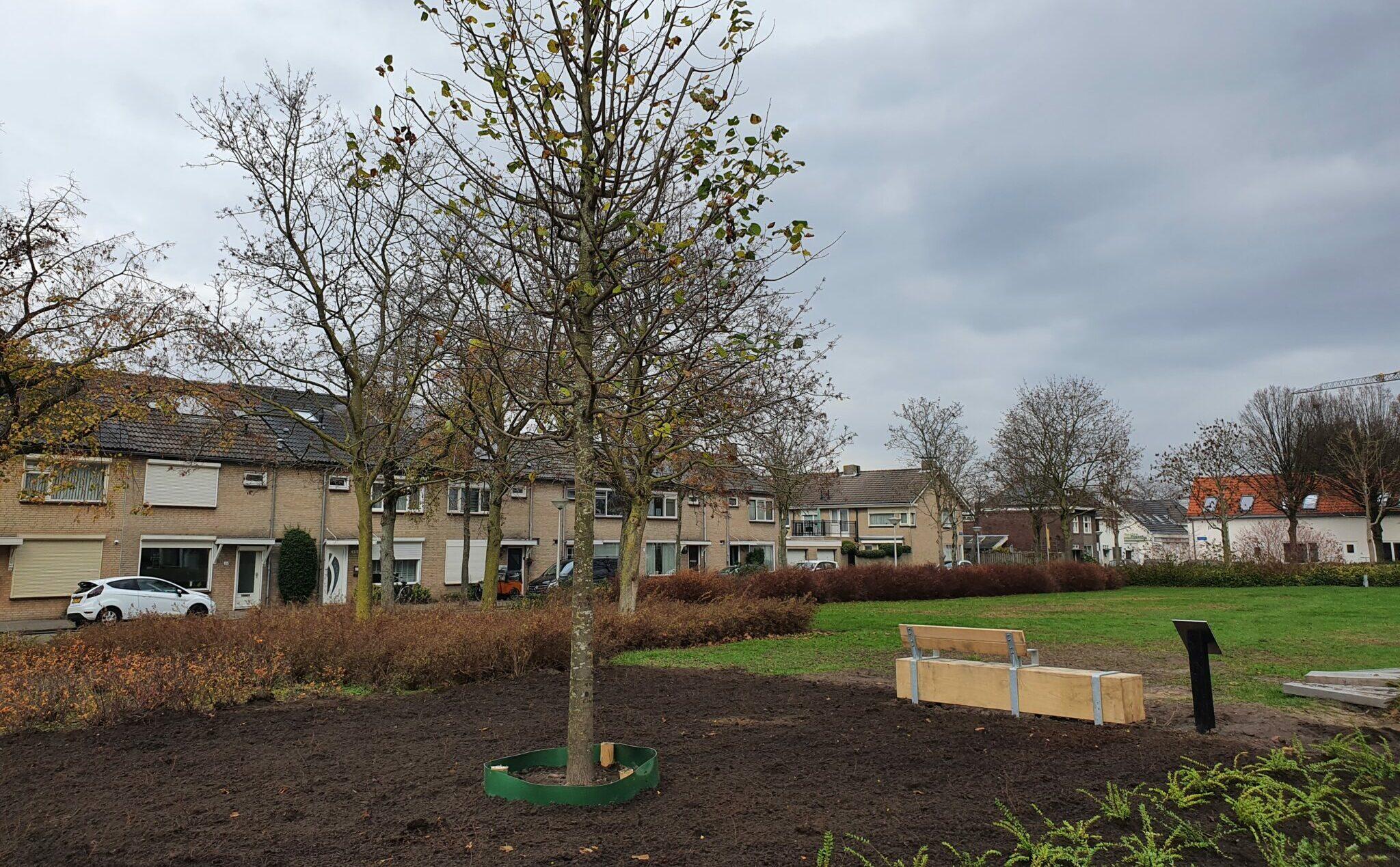 Gedenkbomen Eindhoven