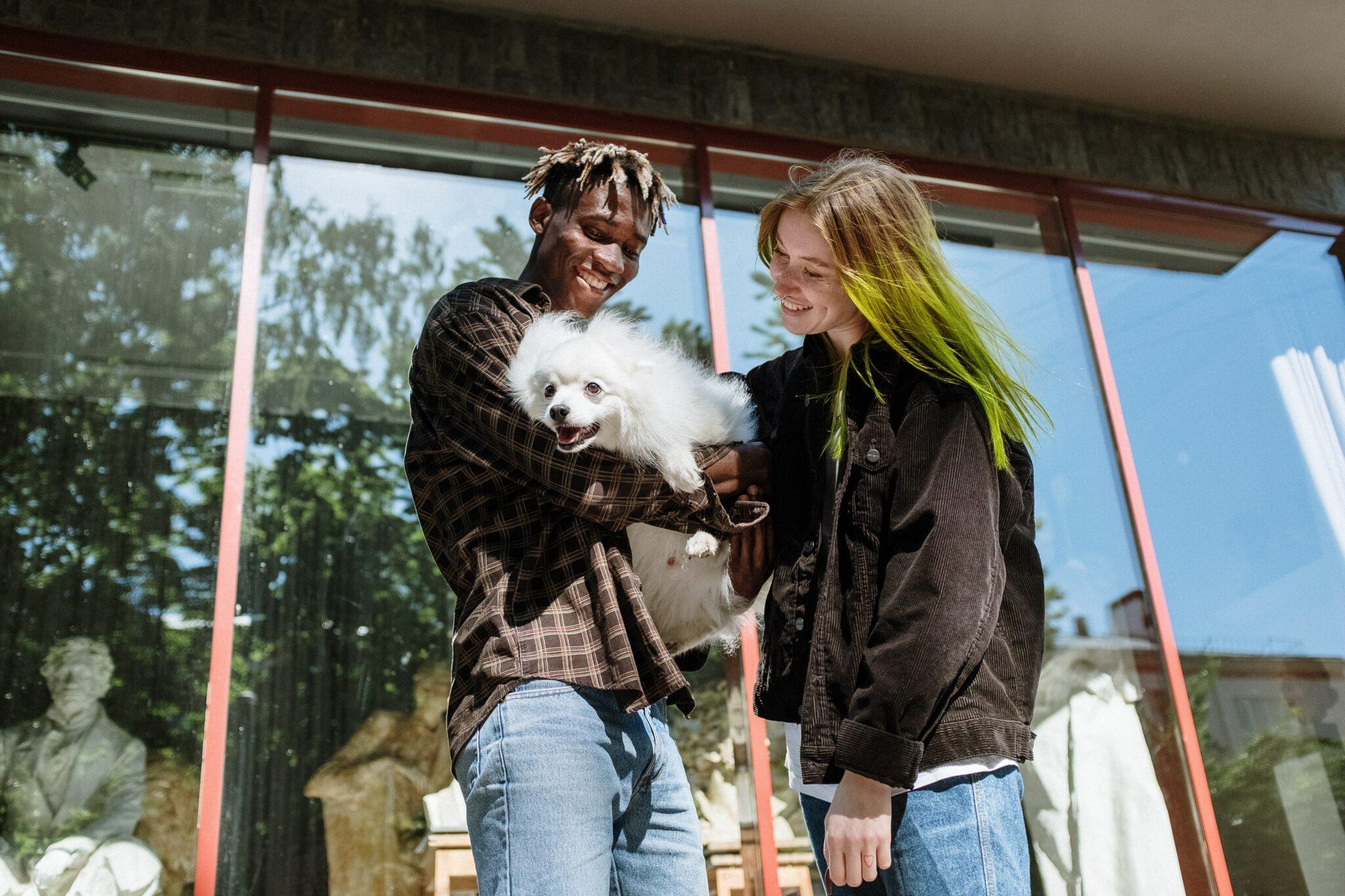 Huisdieren in Eindhoven