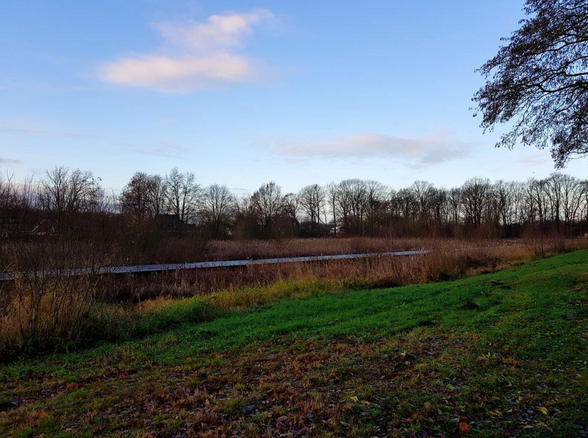 Wandelen achter Wesselerbrinkpark - Nathalie de Groot