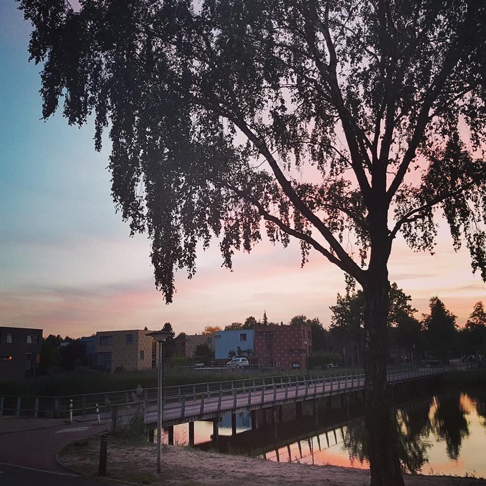 Vederkruidlaan Esmarke - Daan Smit