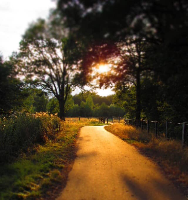 Natuur buiten Helmerhoek - Diana Reinderink-Smit