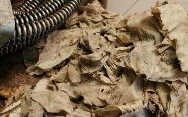 vochtig toiletpapier doorspoelen 2