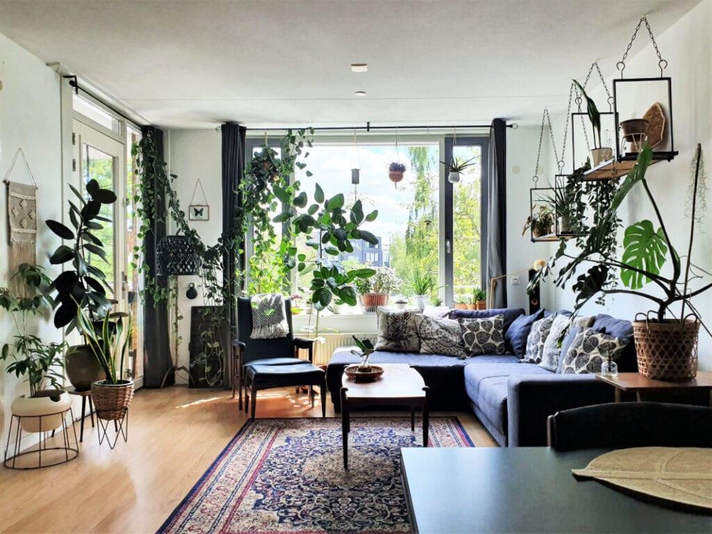Binnenkijken In De Urban Jungle Van Mandy Bij 125 Planten Ben Ik Gestopt Met Tellen Indebuurt Enschede