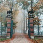 abraham_ledeboerpark-01