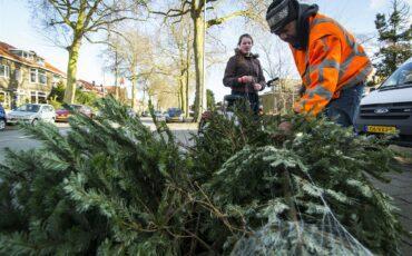 kerstboom_ophalen_ANP-330458542