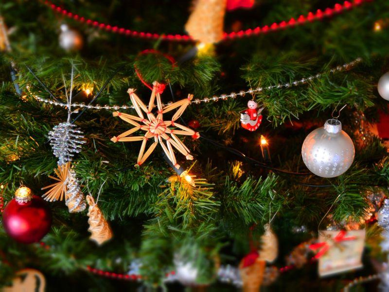 kerstboom kopen