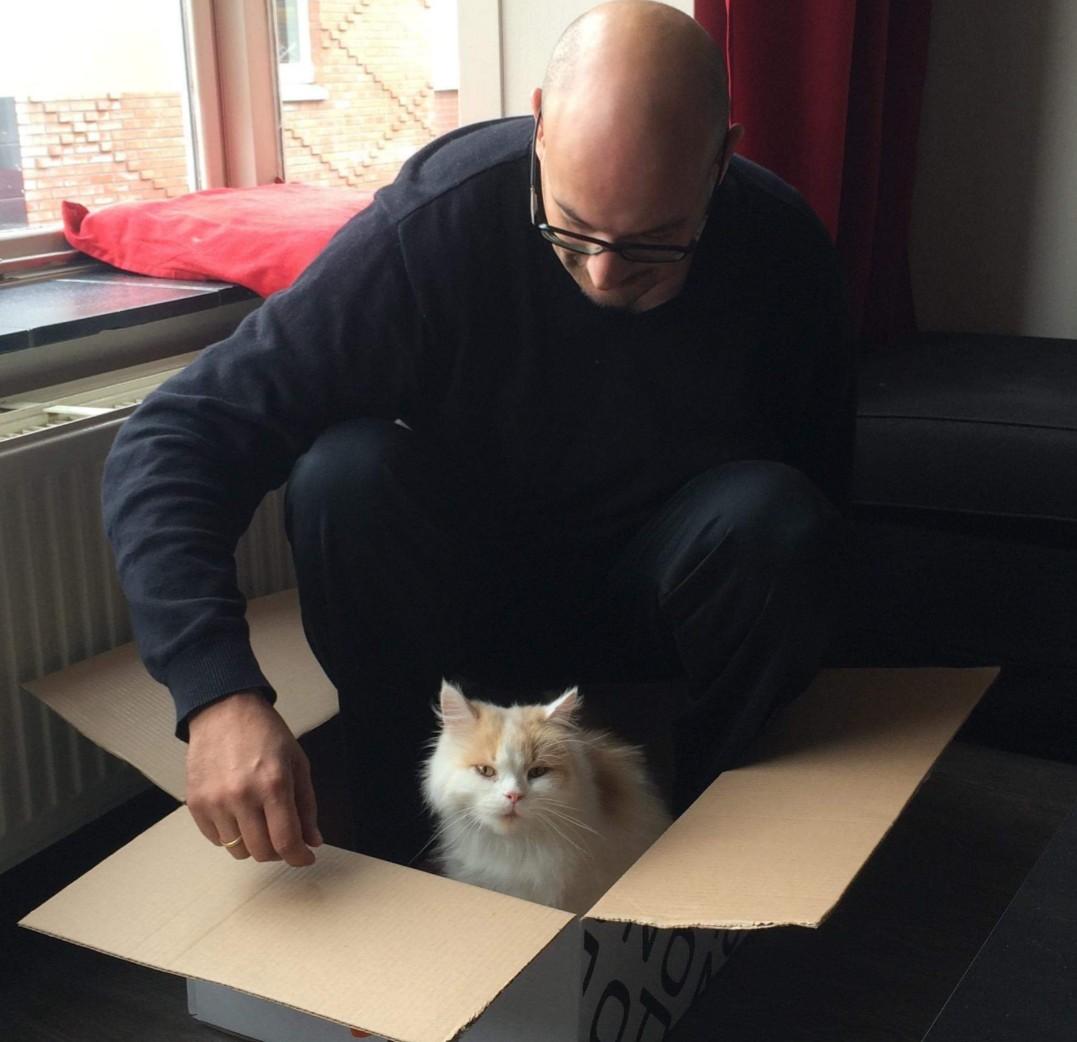 kattenoppasservice