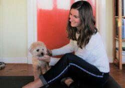 dierfysiotherapeut groningen