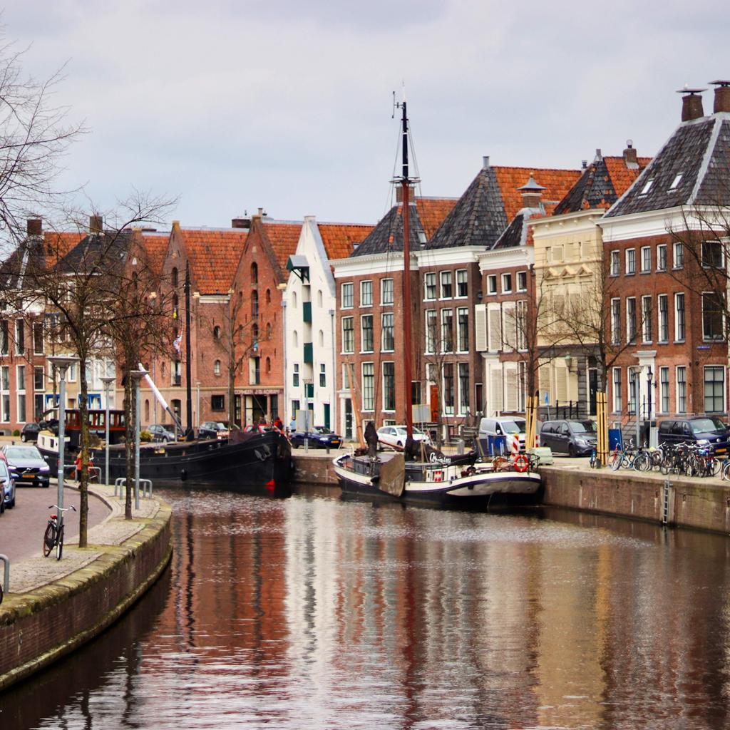 Dakterras Groningen