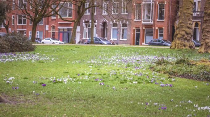Funda Groningen
