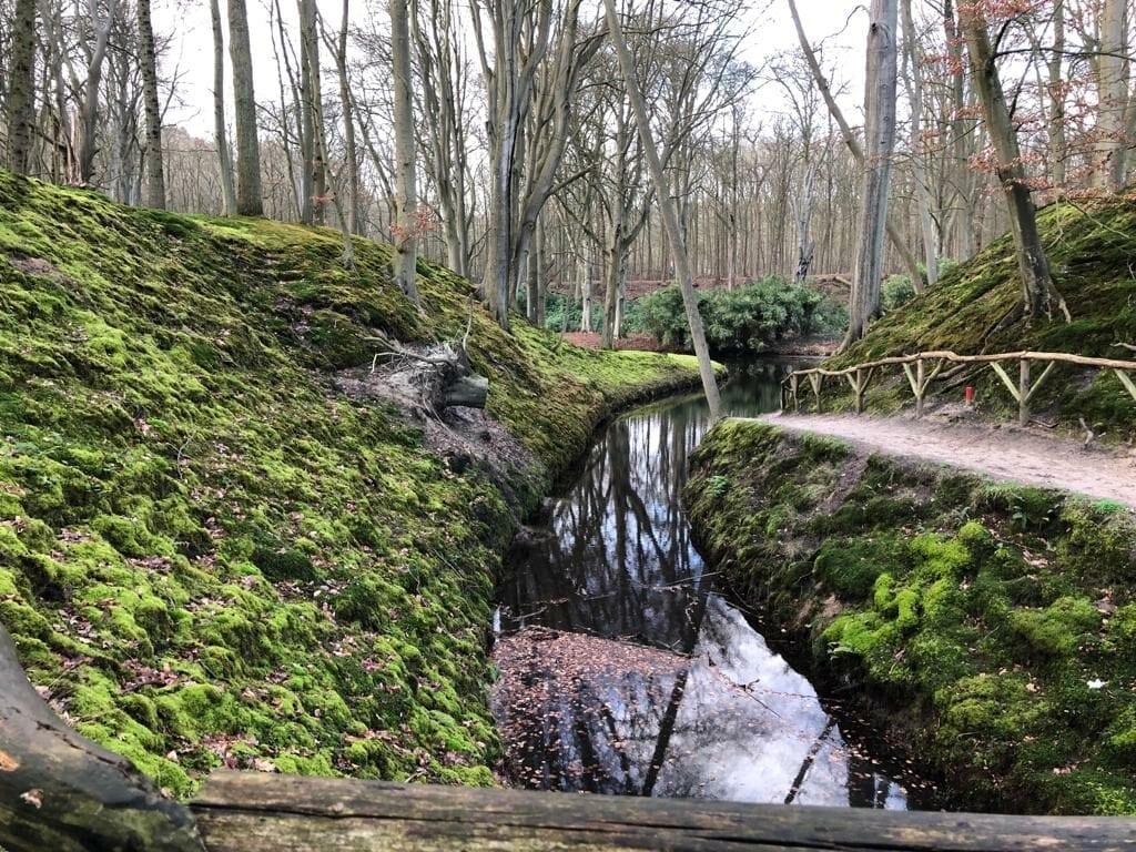 Elswout Haarlem