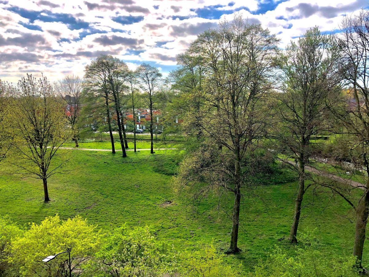 Uitzicht op het Engelandpark door David
