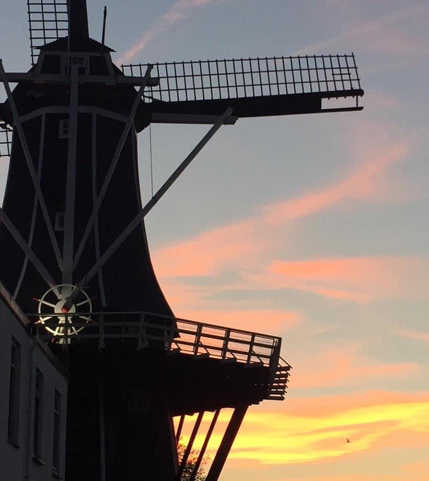 Uitzicht Haarlem majorie